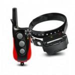 Dog-Accessories-e1338976692464 new